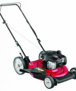 21 in. 140 cc OHV Briggs & Stratton Walk-Behind Gas Lawn Mower
