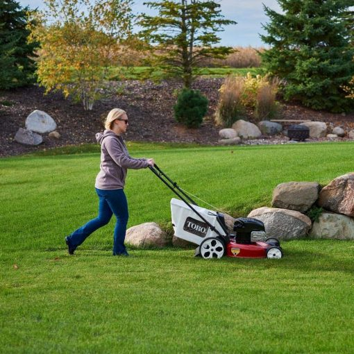 Toucan City Toro Recycler 21 in. Briggs and Stratton High Wheel Gas Walk Behind Push Mower 21320 and Gas Can
